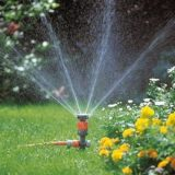 Low Voltage Lighting & Irrigation
